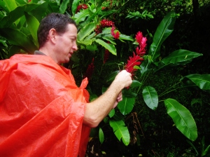 Our guide showing us flowers from the ginger family